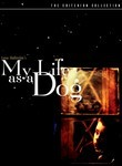 My Life as a Dog (1985)