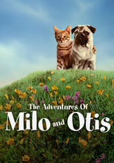 Rent The Adventures of Milo and Otis on DVD