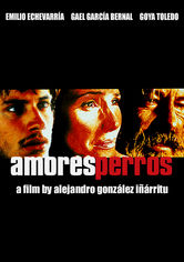 Rent Amores Perros on DVD