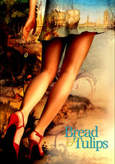 Rent Bread and Tulips on DVD