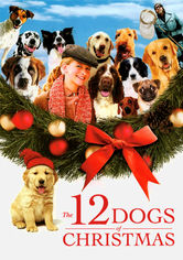 Rent The 12 Dogs of Christmas on DVD
