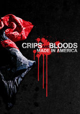 Rent Crips and Bloods: Made in America on DVD
