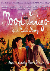 Rent Mood Indigo on DVD