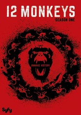 Rent 12 Monkeys: Season 1 on DVD
