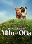 Adventures of Milo and Otis (Koneko monogatari) poster