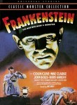 Frankenstein (1931)